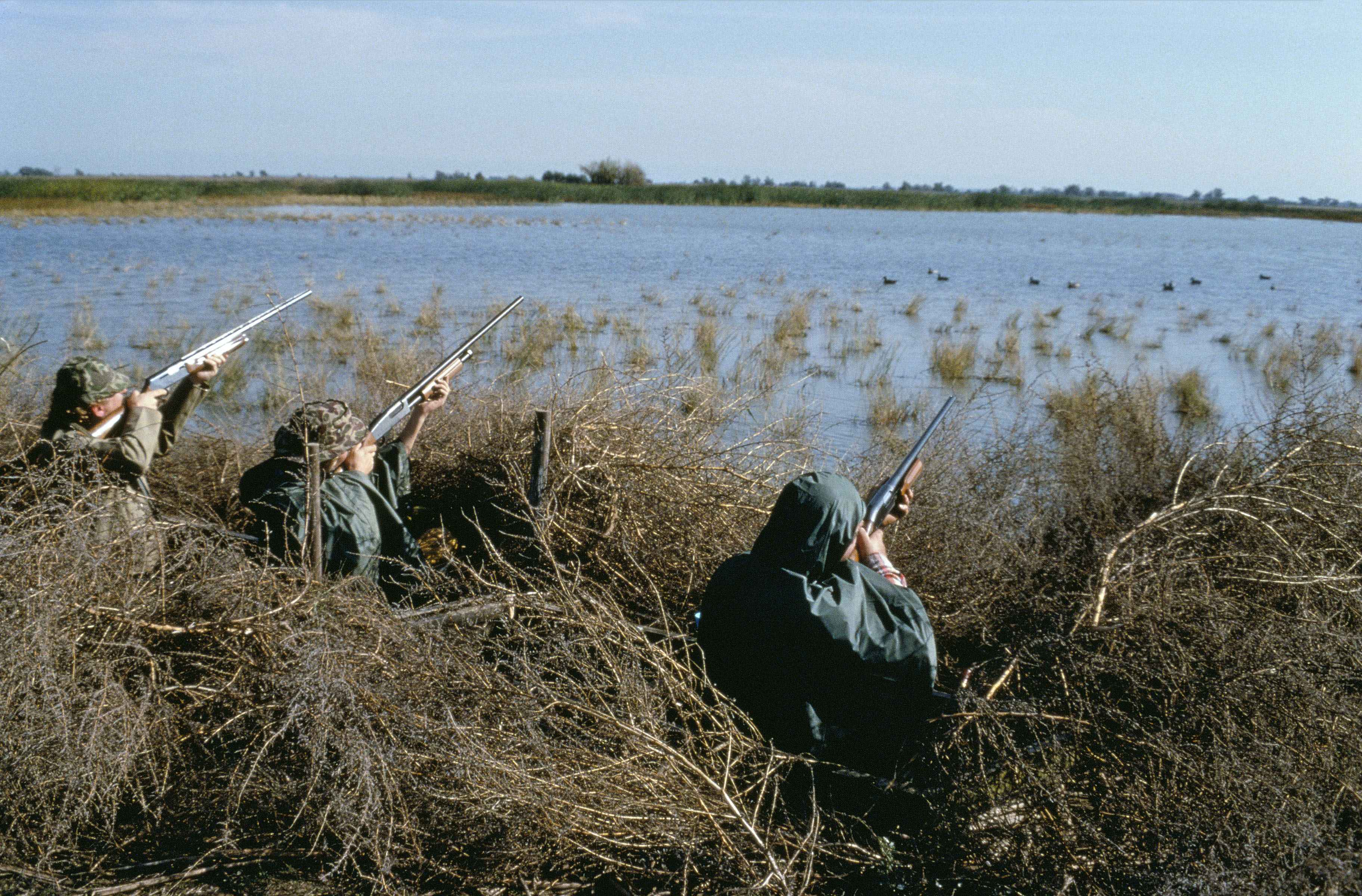 Three_camouflaged_hunters_on_waterfowl